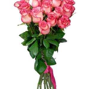 Роза бело розовая Джумилия 80 см 15штук
