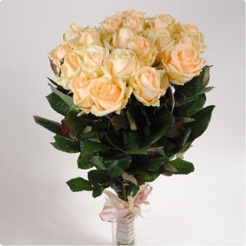 Персиковая роза 50 см 21 штука