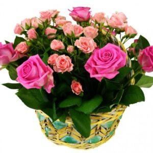 """Корзинка цветов """"Нежность маленькая"""""""