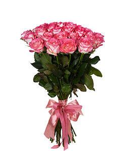 Роза бело розовая Джумилия 60 см 35 штук