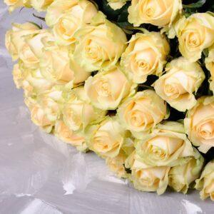 Персиковая роза 80 см 15 штук