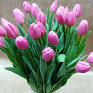 Букет 25 тюльпанов № 123