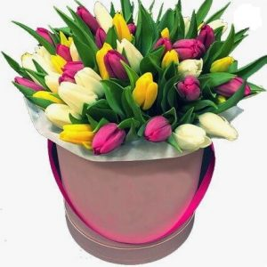 31 тюльпан в коробке № 17