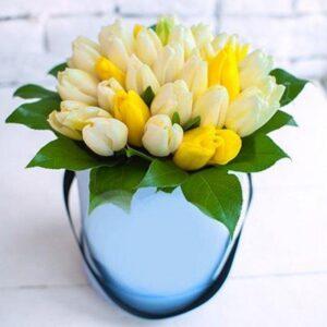 31 тюльпан в коробке № 23