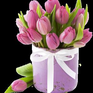21 тюльпан в коробке № 25