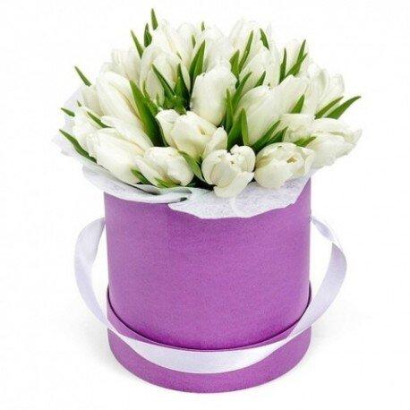 41 тюльпан в коробке