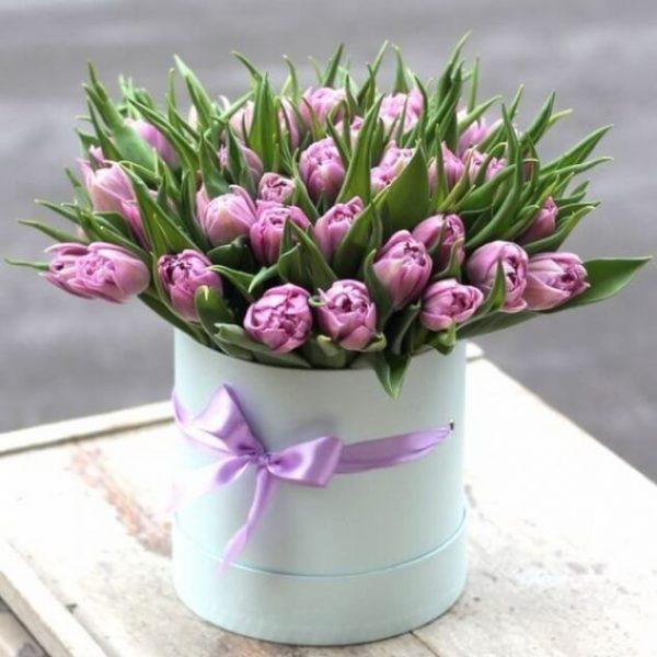 43 тюльпана в коробке