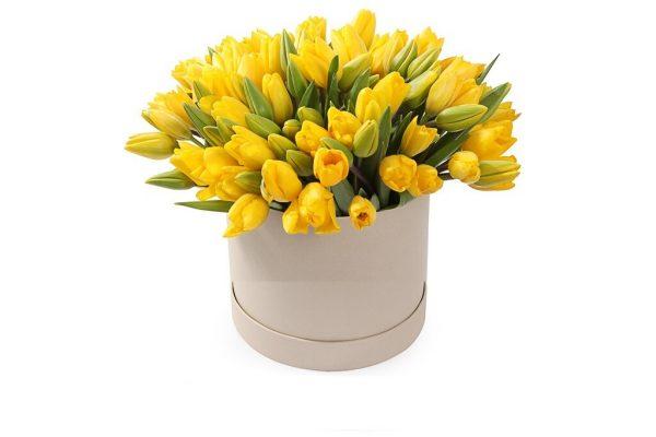 49 тюльпанов в коробке