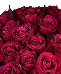 Вишневая роза 80 см