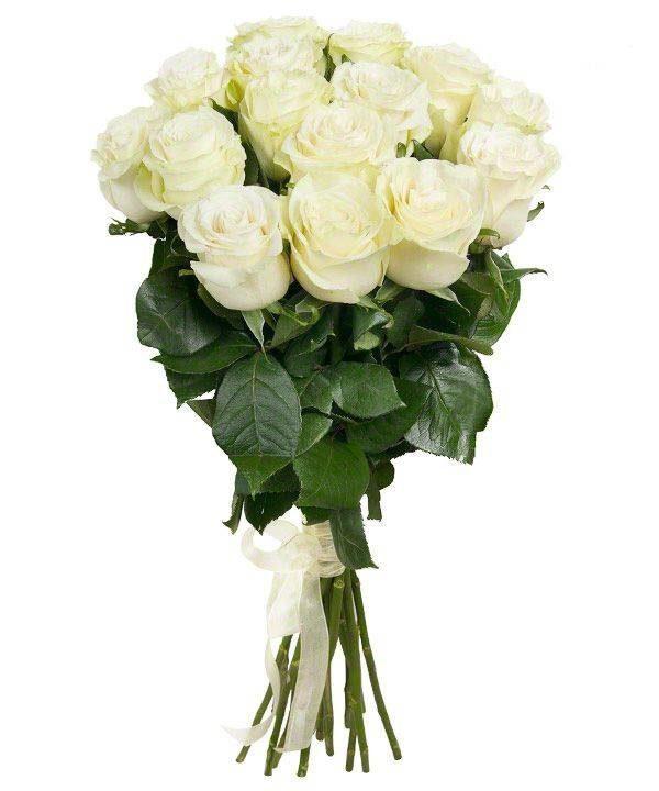 Роза белая 90 см 15 штук