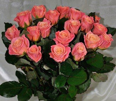 3D роза 80 см 21 штука