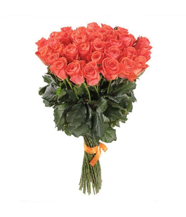 Коралловая роза 80 см 21 штука