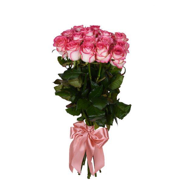 Роза бело розовая Джумилия 90см 11 штук