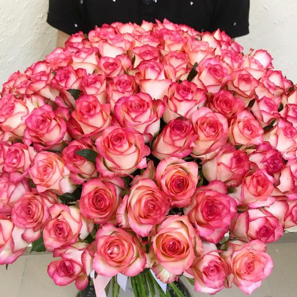 Роза бело розовая Джумилия 51 шт