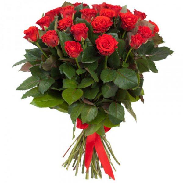 Красная роза Эль Торо 50 см 19 штук