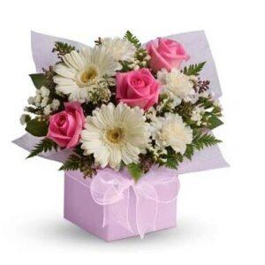 гербера, роза, кустовая роза и гвоздика, фисташка, петрушка, коробка