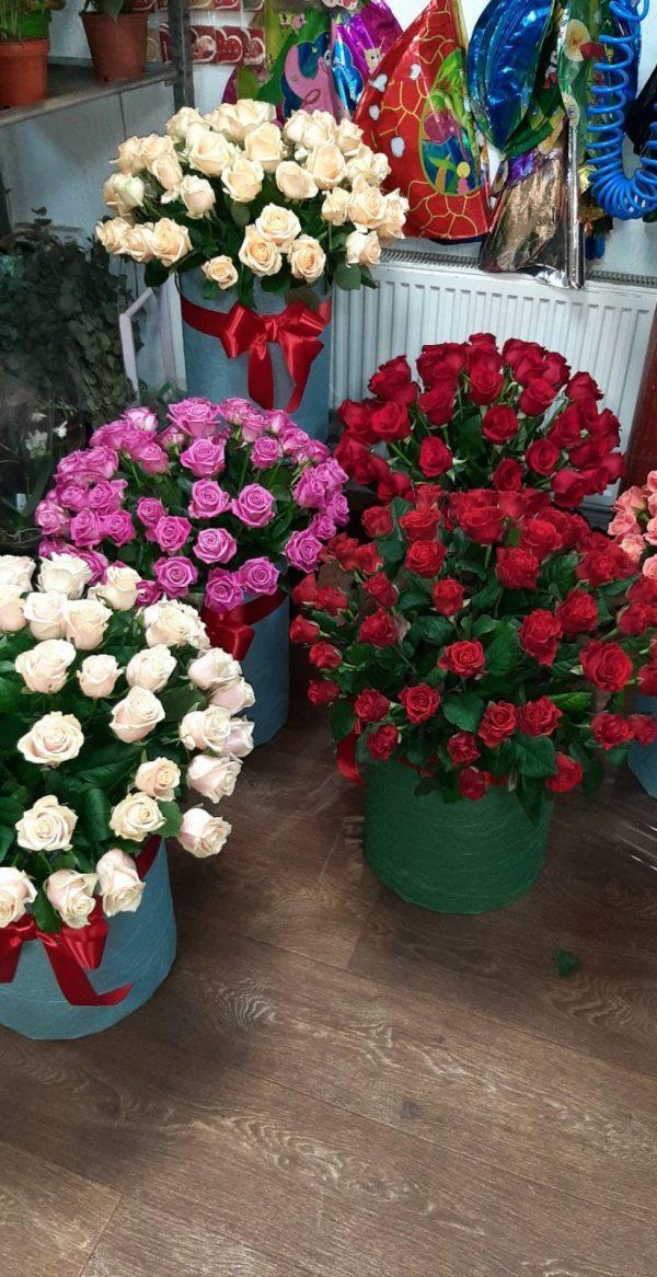 белые, розовые, красные розы